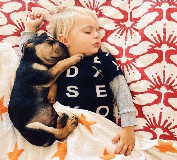 Мальчик и пёсик 3