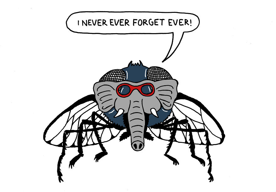 Russians-dont-exaggerate-they-make-an-elephant-out-of-a-fly-595a13f56b195-595b814ee55c5__880
