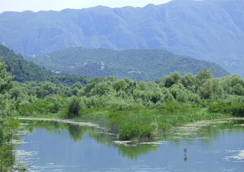 Lake Skadar.
